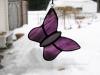 purplewispy